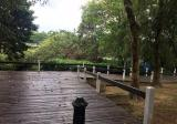 LAKE VIEW LAND (WETLAND) Precint 10, Putrajaya - Property For Sale in Malaysia
