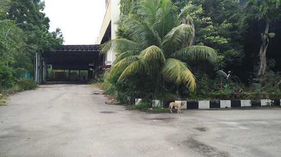 Perai Factory 3acre for sale  112098392