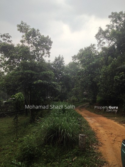 Agri Land With Oud Plantation, Sepang, 1.66 acre FOR SALE  123940571