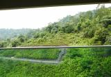 Rimba Residence - Property For Sale in Malaysia