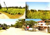 RESIDENTIAL LAND , KOTA MARUDU - Property For Sale in Malaysia