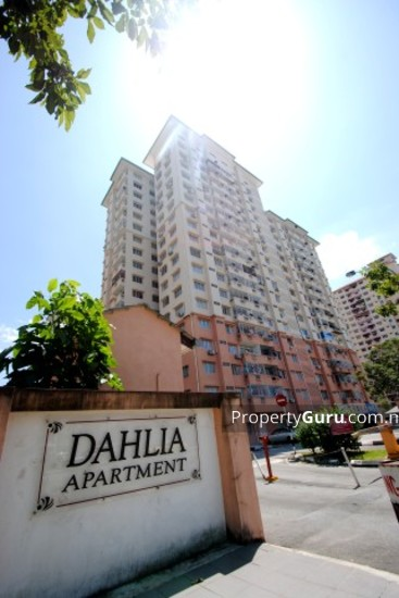 Dahlia Apartment (Sri Rampai)  6012071