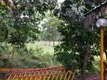 3 Acres Flat Land , Kiansom