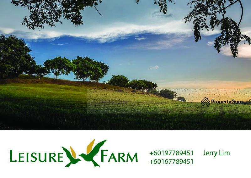Leisure Farm #106914305