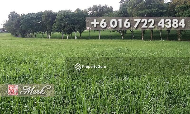 Leisure Farm #114506279