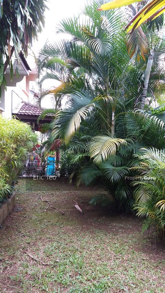 Bukit Bandaraya #125177297