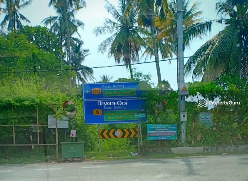 Land Balik Pulau for sale #133421931