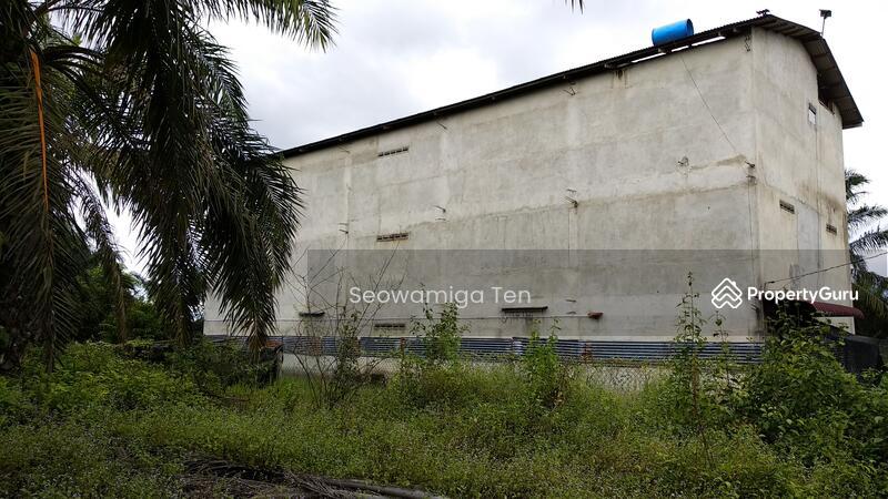 (Palm Oil Land + Swallow House )Urgent Sale  5.18 Acres At Gemas Bahru,Negeri Sembilan #148296285