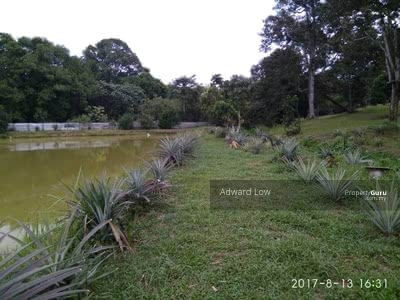 For Sale - AGRICULTURE LAND FREEHOLD AT BATU 13 FOR SALE