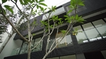 Empire Damansara (Empire Residence)