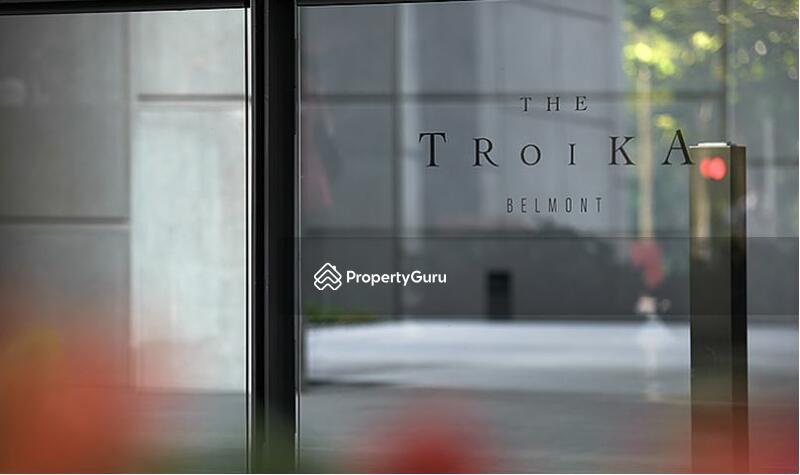 The Troika #151979243